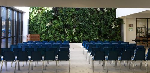 Link Lounge - Our living wall is a spectacular backdrop for any event.
