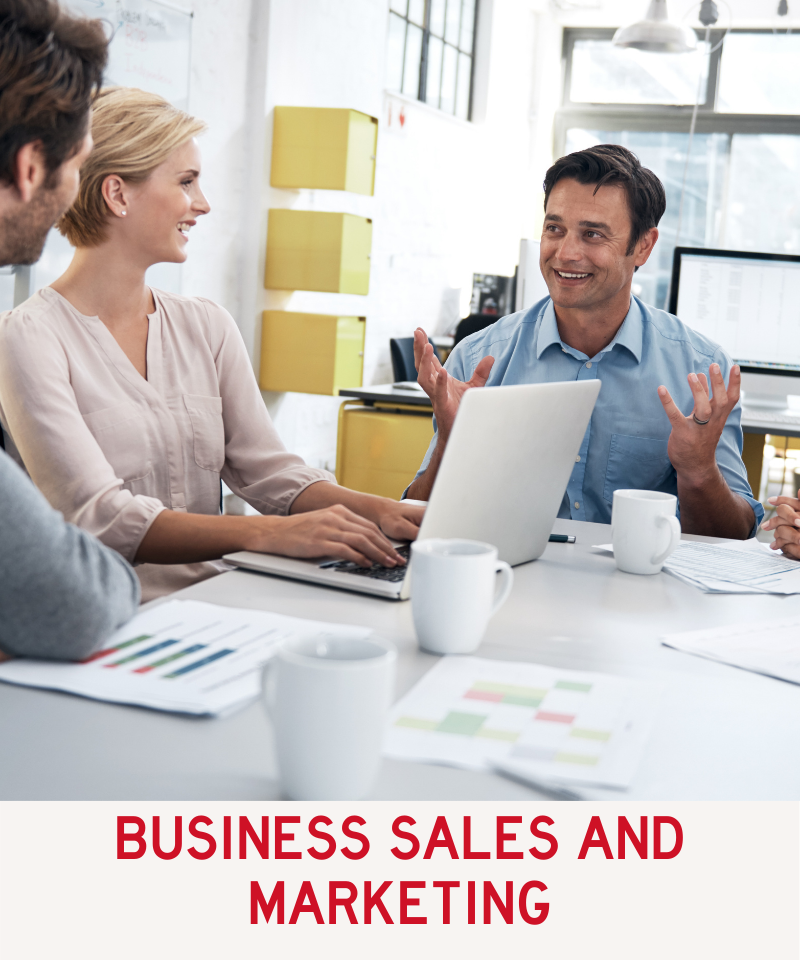 Link to Business Marketing and Sales Program