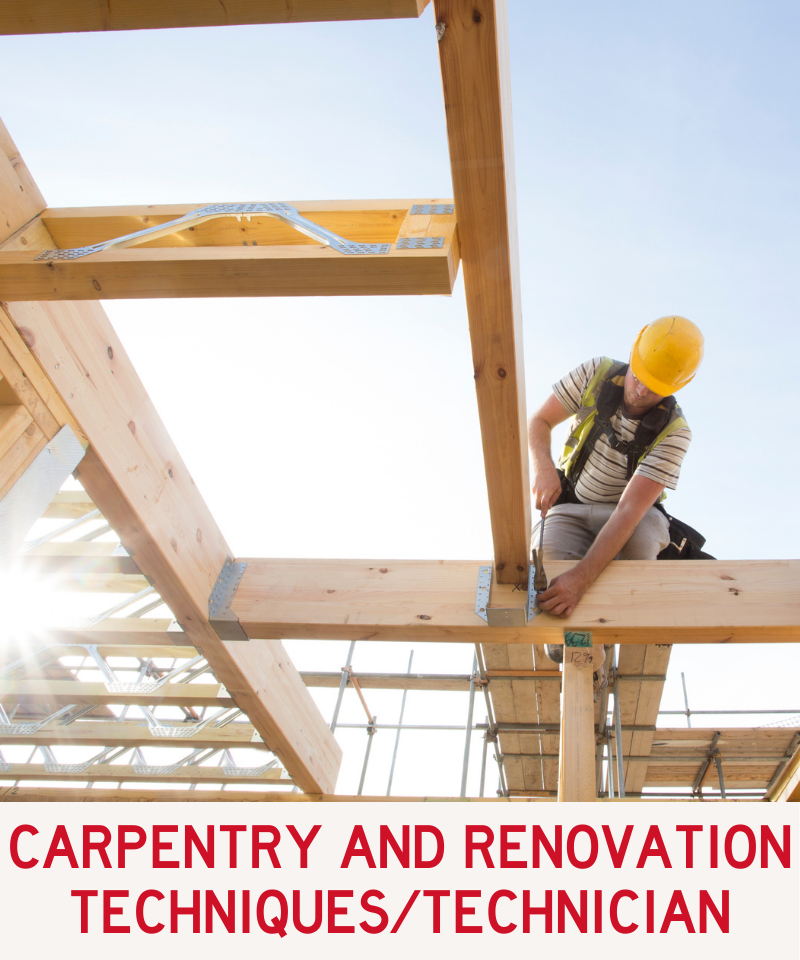 Link to Carpentry and Renovation Techniques and Carpentry Technician Program