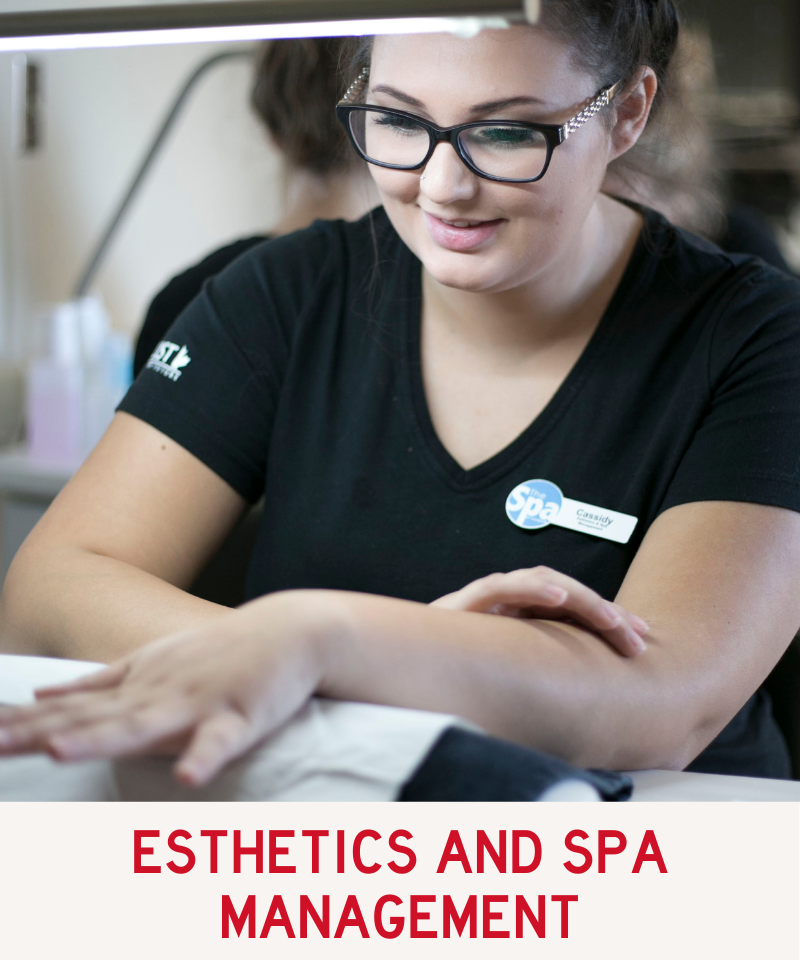 Link to Esthetics and Spa Management Program