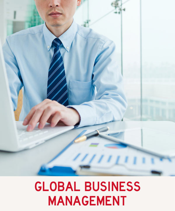 Global Business Management Program Link