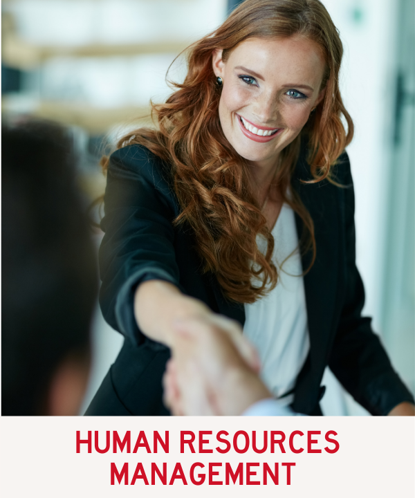 Human Resources Program Link