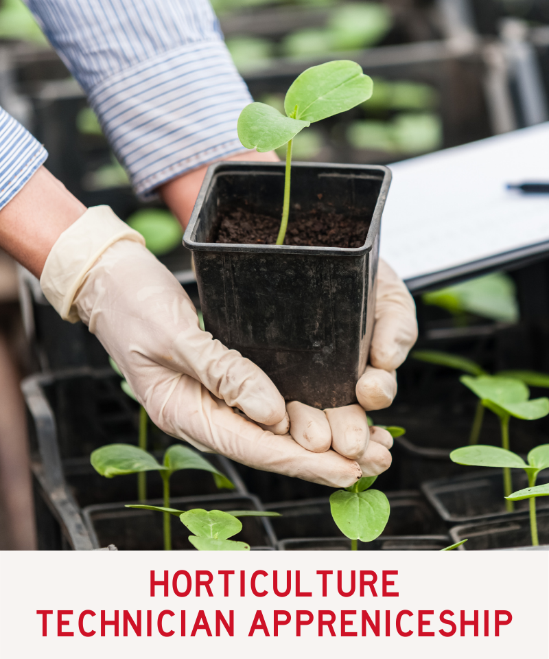 Link to Horticulture Program