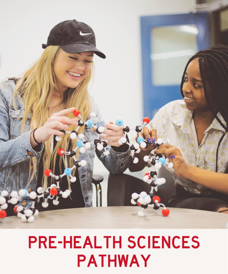 Link to Pre-Health Sciences Pathway Programs